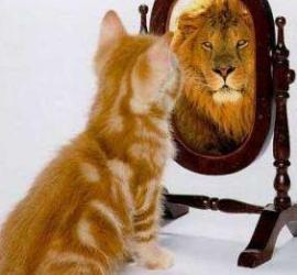 Transformatiecoach maakt elke verandering mogelijk!